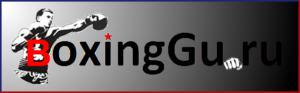Логотип BoxingGu.ru союз профессионального бокса России