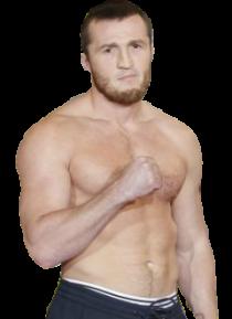 Денис Лебедев боксерская карьера