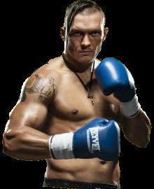 Александр Усик - украинский боксер профессионал - боксерская карьера