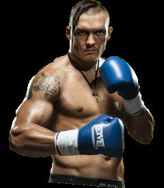Александр Усик боксерская карьера