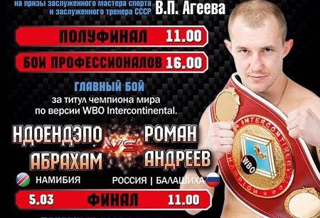 Бой Роман Андреев против Абрахам Ндоэндапо