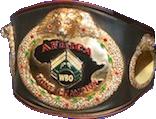 Чемпионский пояс WBO Africa
