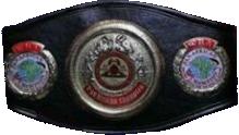 Чемпионский пояс WBA Pan African