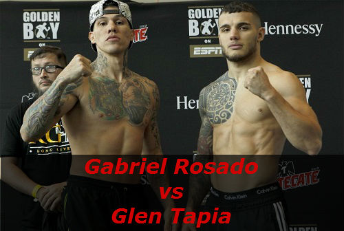 Бой Габриэль Росадо против Глен Тапиа