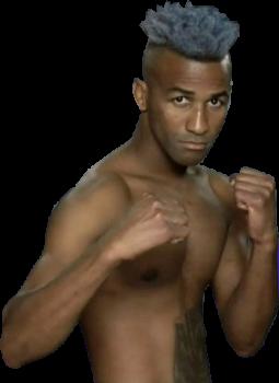 Рансес Бартелеми — кубинский профессиональный боксёр