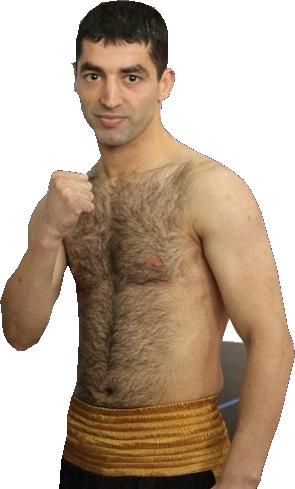 Михаил Алоян - биография - карьера - видео боев
