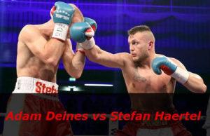 Бой Адам Дейнес против Стефан Хартель