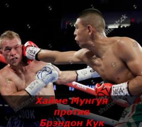 Бой Хайме Мунгуя против Брэндон Кук