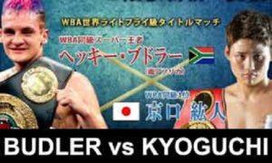 Бой Хекки Будлер против Хирото Кёгучи