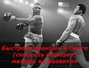 Быстрота реакции в боксе (скорость реакции) и методы ее развития