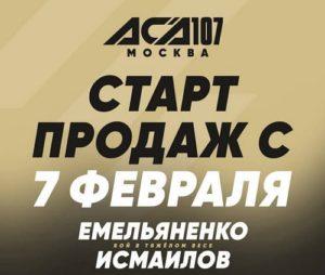 Билеты на бой Емельяненко - Исмаилов в продаже с 7 февраля