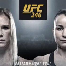Видео боя Холли Холм — Ракэль Пеннингтон / UFC 246