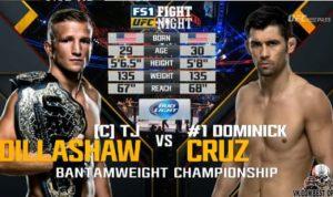 Видео боя Доминик Круз - Ти Джей Диллашоу / UFC Fight Night 81