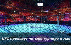 UFC проведут четыре турнира в мае