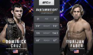 Видео боя Доминик Круз - Юрайя Фейбер 2 / UFC 199