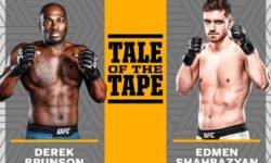 Full fight video: Derek Brunson vs. Edmen Shahbazyan / UFC Fight Night