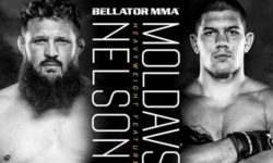 Full fight video: Roy Nelson vs. Valentin Moldavsky / Bellator 244