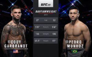 Видео боя Педро Муньоз - Коди Гарбрандт / UFC 235