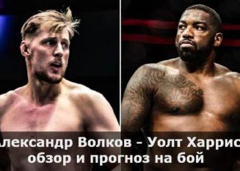 Александр Волков — Уолт Харрис / обзор и прогноз на бой