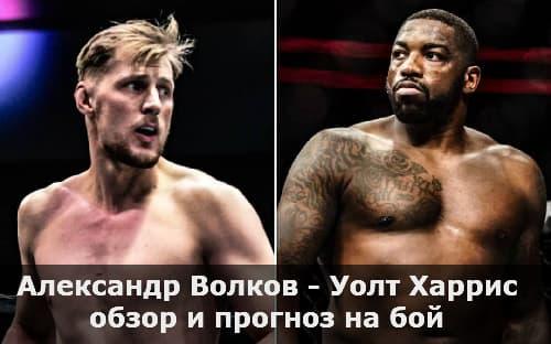 Александр Волков - Уолт Харрис / обзор и прогноз на бой