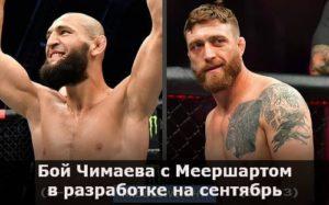 Бой Хамзата Чимаева с Джеральдом Меершартом в разработке на сентябрь