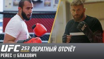 UFC 253: Обратный отсчет — Рейес vs Блахович