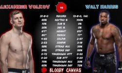 Видео боя Александр Волков — Уолт Харрис / UFC 254
