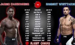 Видео боя Роберт Уиттакер — Джаред Каннонье / UFC 254