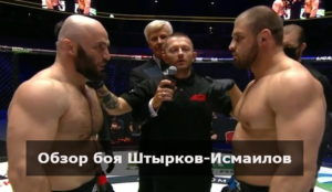 Обзор боя Штырков-Исмаилов