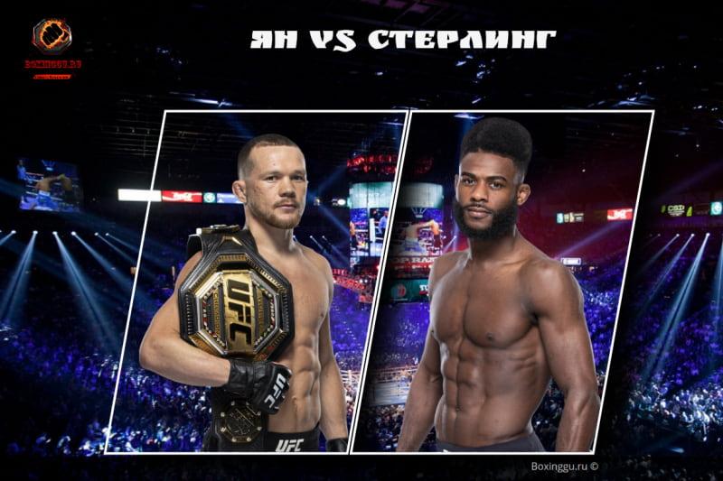 Видео боя Пётр Ян - Алджамейн Стерлинг / UFC 259