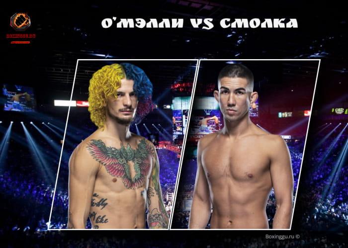 Шон О'Мэлли подерется с Луисом Смолкой на UFC 264