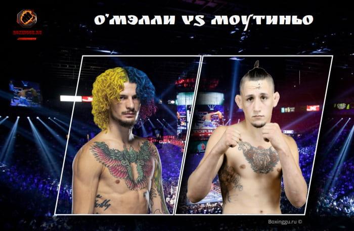 Новым соперником Шона О'Мэлли на UFC 264 станет Крис Моутиньо